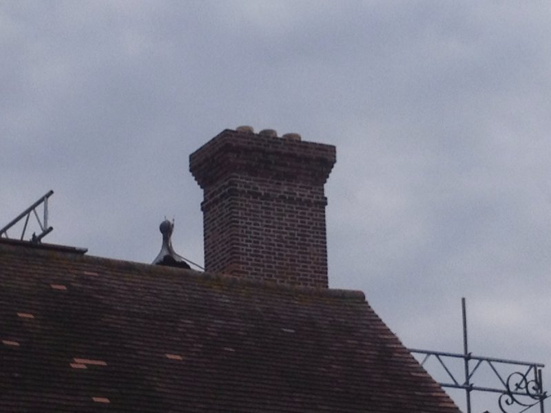 chessington-world-of-adventures-chimney-project-30