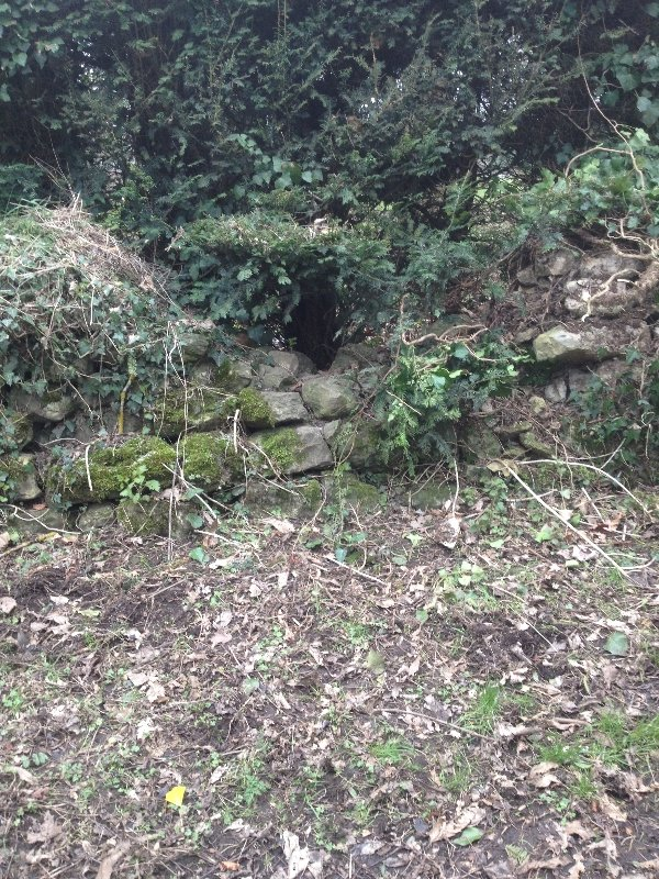 drystone-wall-before-1