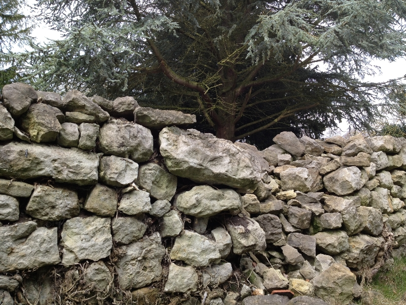 drystone-wall-before-2